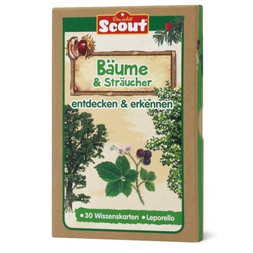 Scout Lernkarten-Box - Bäume & Sträucher