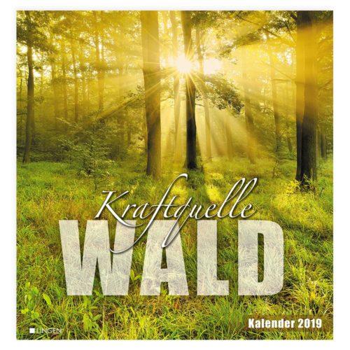 Dekokalender 2019: Kraftquelle Wald
