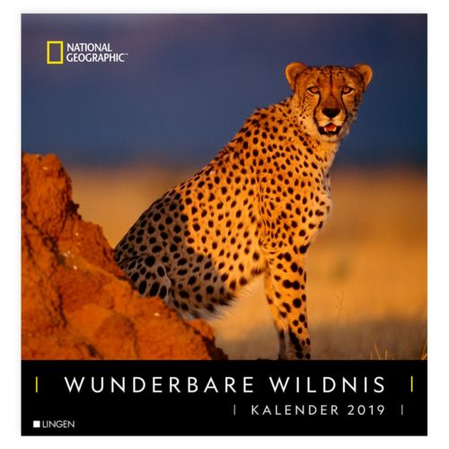 Dekokelander 2019: Wunderbare Wildnis