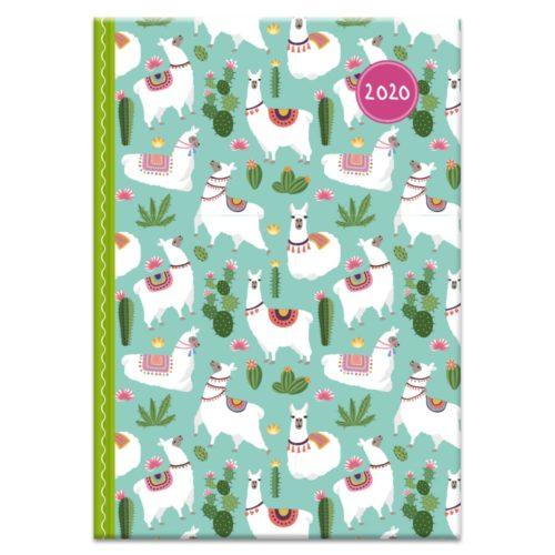 Buchkalender 2020 - Lama