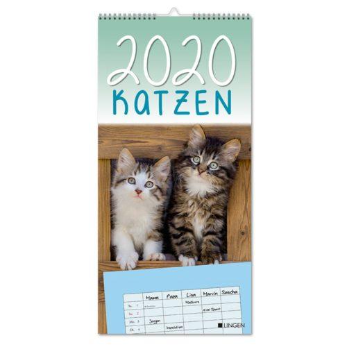 Streifenkalender 2020 - Katzen