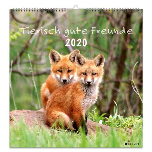 Dekokalender 2020 - Tierisch gute Freunde