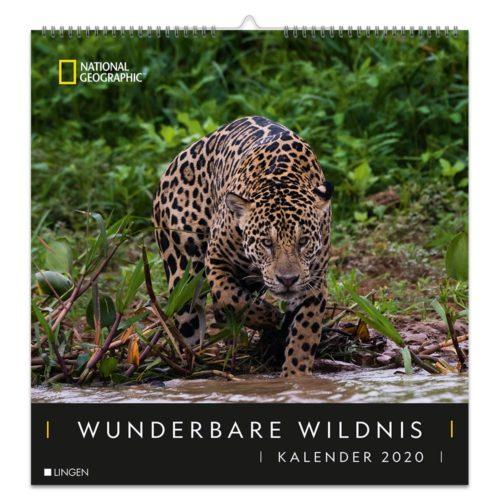 Dekokalender 2020 - Wunderbare Wildnis
