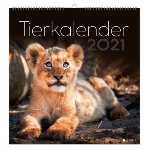 Dekokalender 2021 – Tierisch gute Freunde