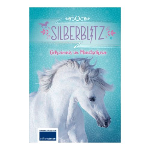 Ferien-Lesebuch: Silberblitz